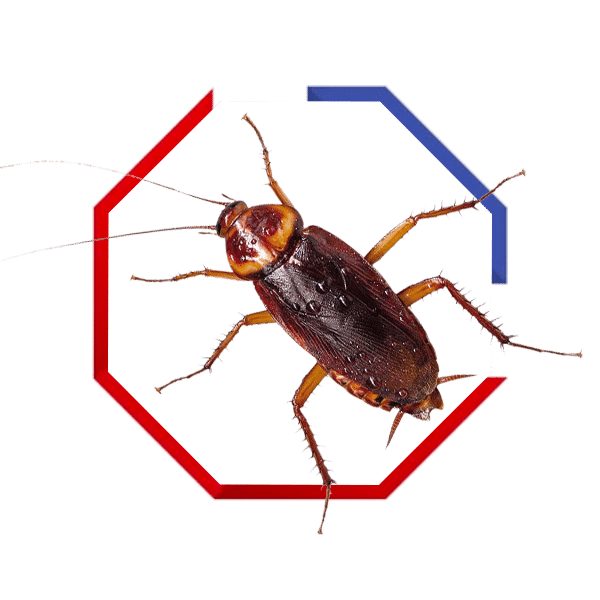 tick control services in Dickson